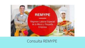 Consulta REMYPE