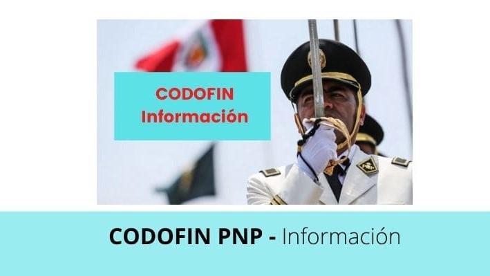 Conoce qué es el CODOFIN y cómo obtenerlo