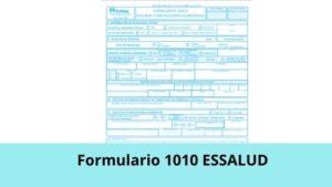 Formulario 1010 Essalud