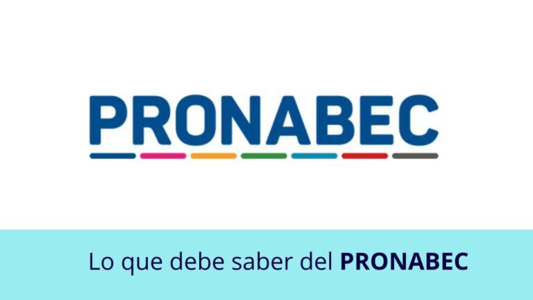 Lo que debe saber del PRONABEC