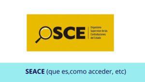 ¿Qué es el Seace y cómo acceder?